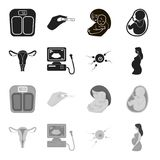 Uterus, apparatus of ultrasound, fertilization. Pregnancy set collection icons in black,monochrome style vector symbol. Stock illustration Royalty Free Stock Images