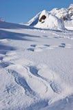 Utfärd på de snöig banorna Arkivfoto