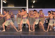 utför maori nya för danshaka kriger zealand Royaltyfri Bild