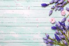 utformad glass fjäder för blommaram som befläckas Arkivfoto
