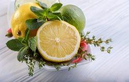 Utformad sammansättning med citronen, limefrukt och mintkaramellen på den vita plattan på trätabellen dekorativt hörn royaltyfri bild