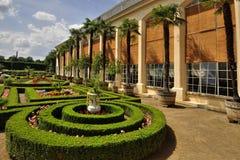 Utformar blom- bakgrund för blomman Garden Royaltyfri Bild