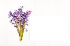 Utformat materielfotografi Fotografering för Bildbyråer