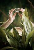 Utforskare som finner en enorm ädelsten i djungeln Arkivfoton
