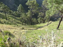 Utforskning i Himachal 3-Kasauli Royaltyfri Foto