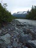 Utgångsglaciär Alaska arkivbild