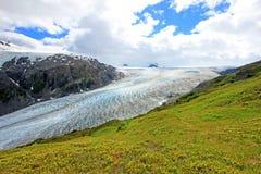 Utgångsglaciär, Harding isfält, Kenai fjordar nationalpark, Alaska royaltyfri bild