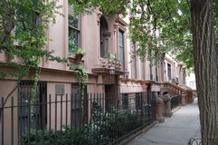 utgångspunkter New York för höjder för brooklyn rödbrun sandstenstad Arkivfoto