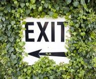 Utgångstecken med murgrönan Royaltyfri Fotografi
