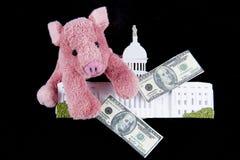 Utgifter för griskötttrumma i kongress Royaltyfria Bilder