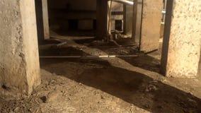 Utilidades subterrâneas, esgoto da lama de um dos porões de casas de apartamento filme