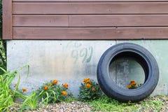 On a utilisé le vieux pneu près d'un mur de la maison de jardin avec les fleurs et une inscription 1991 Photo libre de droits