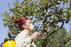 Utilisant des produits chimiques dans le jardin images libres de droits