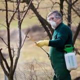 Utilisant des produits chimiques dans le jardin/verger image libre de droits