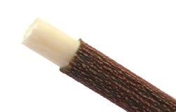 Utilisation de brindille de Neem en tant que brosse à dents de fines herbes Image libre de droits