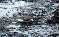 Utilisation volontaire le râteau de balayer les déchets hors de la mer Décapant de plage rassemblant des déchets sur la plage de  images libres de droits