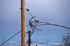 Utility Pole and Wires Stock Photos