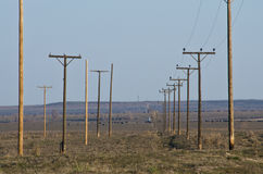 Utility Poles Standing in the Desert Stock Images