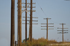 Utility Poles Standing in the Desert Royalty Free Stock Images
