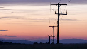 Utility poles. With sunset sky background royalty free stock images