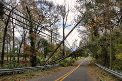 Utility Power Line and Pole Toppled by Fallen Tree. Electric power line with telephone service wire and television distribution cable on a wood utility pole Stock Photography