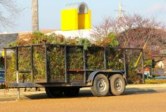 Utility Trailer filled with Shrubbery Royalty Free Stock Photos