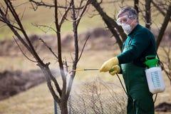 Utilizzando i prodotti chimici nel giardino/frutteto Fotografia Stock Libera da Diritti