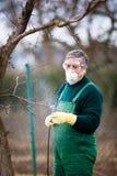 Utilizzando i prodotti chimici nel giardino/frutteto Fotografie Stock
