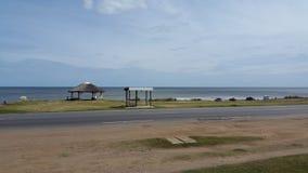 Utkik för val, bellavista Uruguay Royaltyfria Bilder