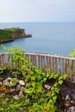 Utkik med beskådar av havet Fotografering för Bildbyråer