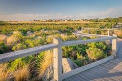 Utkik på käkbenreservområde Arkivfoton