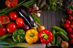 Utläggning som är nära upp av nya organiska grönsaker, sammansättning med blandade rå organiska grönsaker, röd peppar och tomaten Arkivfoto