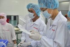 Utländska köpare visitting en havs- fabrik i centralen av Vietnam Arkivfoton