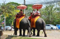 Utlänninghandelsresanden som rider thailändska elefanter, turnerar i Ayutthaya Thailand Royaltyfria Foton