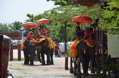 Utlänninghandelsresanden som rider thailändska elefanter, turnerar i Ayutthaya Thailand Arkivfoton