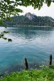 Utlöpare av fjällängarna, blödd sjö, Slovenien, Europa royaltyfri fotografi