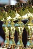 utmärkelsear Fotografering för Bildbyråer