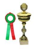 utmärkelsekoppstickkontakt royaltyfria bilder