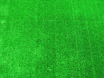 utmärkt gräs för bakgrund Royaltyfria Foton