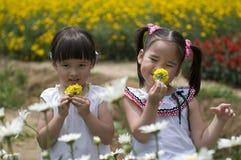 utomhus- barn för flickor Royaltyfri Foto