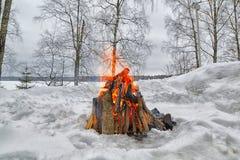Utomhus- brasa för vinter royaltyfri foto