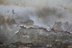 Utomhus- cementvägg Arkivfoto