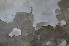 Utomhus- cementvägg Royaltyfria Foton