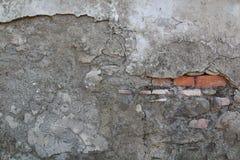 Utomhus- cementvägg med röda tegelstenar Royaltyfri Foto
