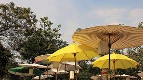 Utomhus färgrik mullbärsträd Peper Mubrella royaltyfri fotografi