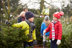 Utomhus- familj som tillsammans väljer julgranen royaltyfri bild