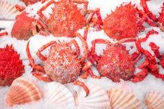 Utomhus- fiskmarknad med krabban och räka på is, Paris, Frankrike royaltyfria foton