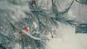 Utomhus- gran med julleksaker på filialerna i vintern stock video