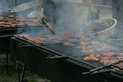 utomhus- grillfest arkivbilder