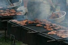utomhus- grillfest Royaltyfri Fotografi